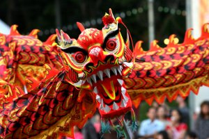 Chinese New Year on the Gold Coast